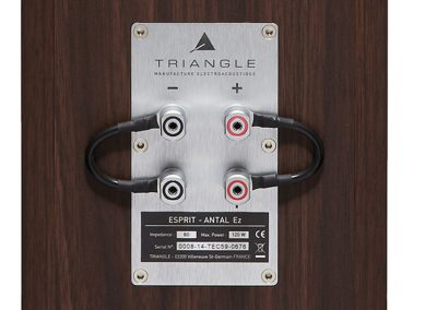 Seattle and Minnesota TRIANGLE Antal Speakers Authorized Dealer